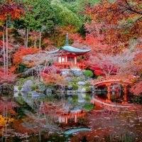 tailormade-and-group-tour-japan-highlight-kyoto-daigo-ji-temple