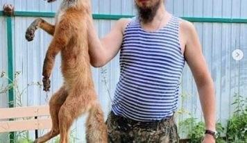 Поп жестоко убил лису и устроил пиар фотосессию в инстаграм